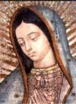 Lagrimas de la Virgen de Guadalupe