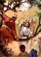 Evangelio del Domingo 3 de noviembre de 2013