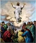 Evangelio del Domingo 1 - 6 - 2014