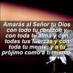 Evangelio del Domingo 26-10-2014
