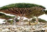 Fenomenos impactantes de la naturaleza