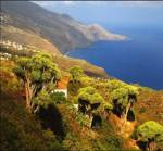 La Palma - Islas Canarias