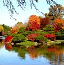 Lo relajante del otoño