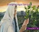 Video del Evangelio de hoy - Lucas 13, 1-9