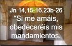 Evangelio del Domingo 15 de mayo de 2016