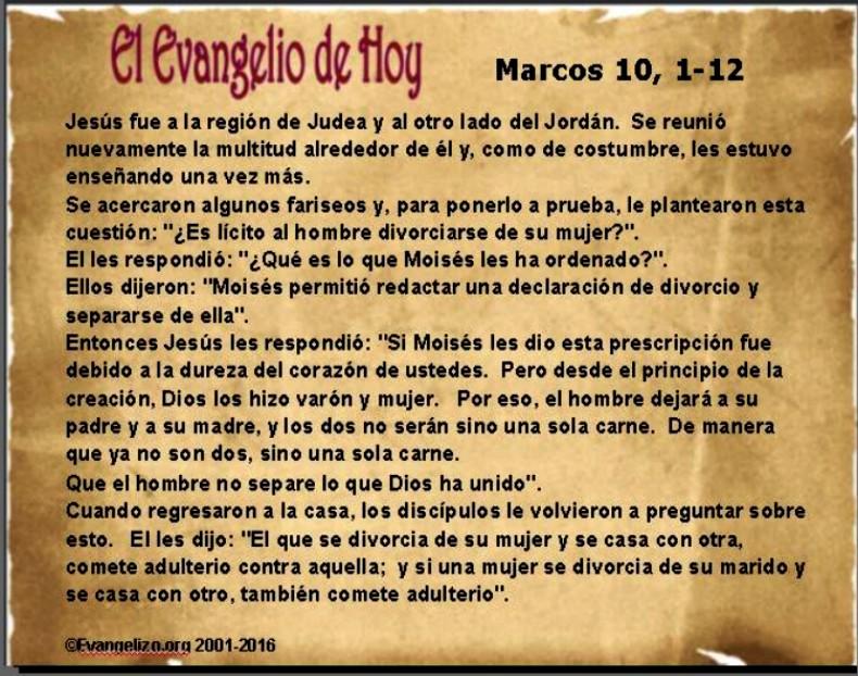 Evangelio de Hoy 20 de mayo de 2016 – Marcos 10, 1-12 « VitaNoble ...