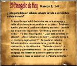 mateo-3-1-6-evangelio-de-hoy